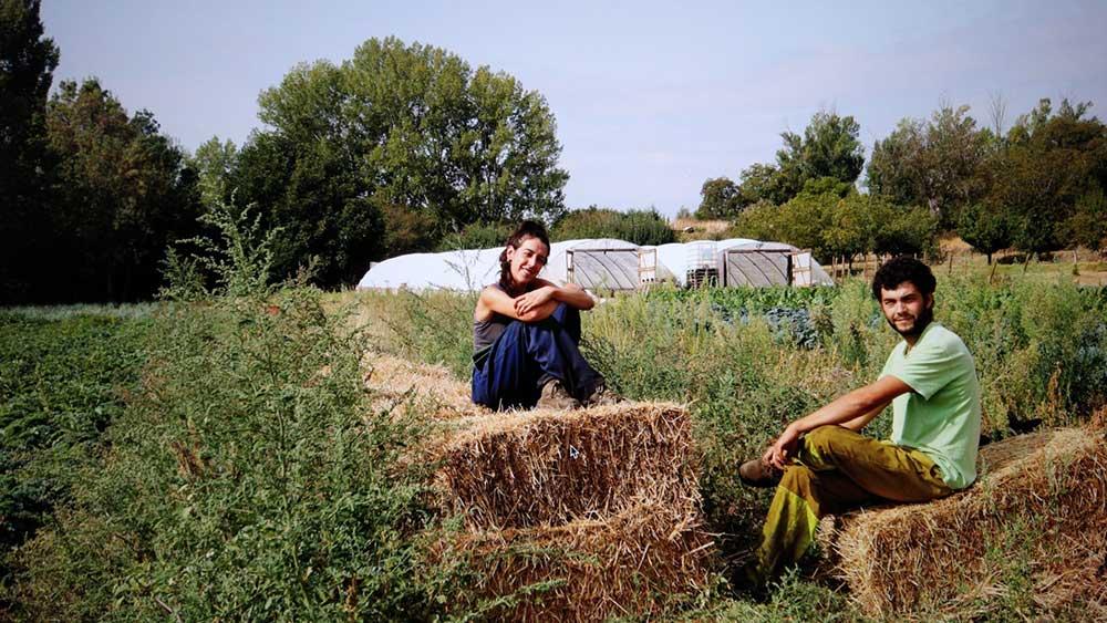 Unión-de-Huertas-Agroecológicas-de-Madrid3